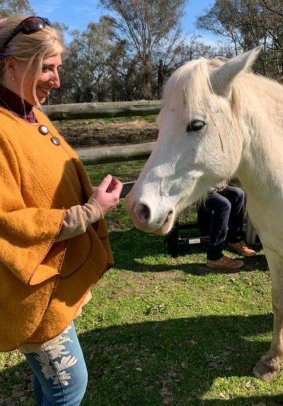 contelaciones familiares con caballos